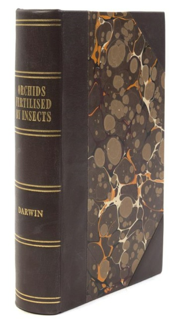 On the Various Contrivances by Which British and Foreign Orchids are Fertilised by Insects, and On the Good Effects of Intercrossing. Charles DARWIN.