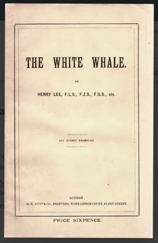 [Moby Dick] The White Whale. Henry LEE, 1826/7–1888.