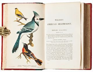 [Hand-Colored] American Ornithology; or, The Natural History of the Birds of the United States