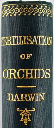 The Various Contrivances by Which British and Foreign Orchids are Fertilised by Insects